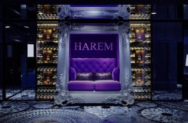 HAREM総本店